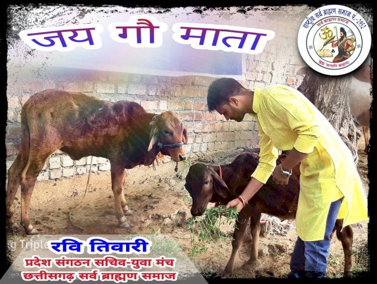 गाय माता को राष्ट्र माता घोषित किया जाये-  रवि तिवारी